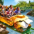 Busch-Gardens-Tampa-Bay-120x120 - palm beach