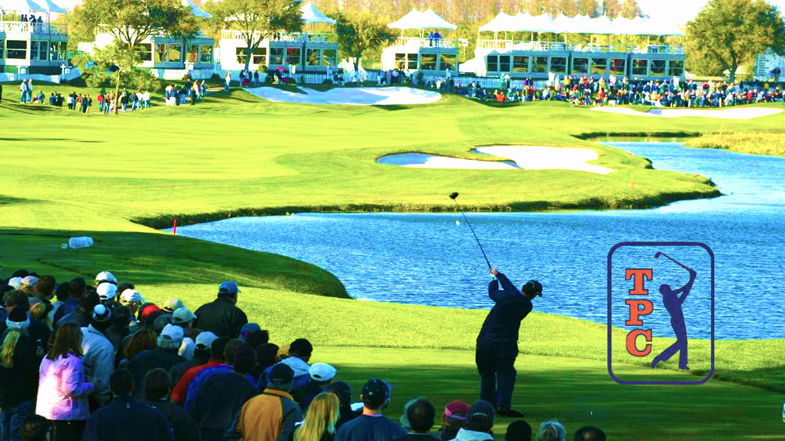 tpc-of-tampa-bay-11 - palm beach