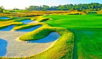 Dye-Course-by-Pete-Dye3-397x230 - palm beach