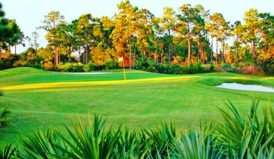 evergreengolfclub-397x230 - palm beach